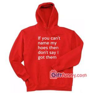 If You Can't Name My Hoes Then Don't Say I Got Them Hoodie – Funny Coolest Hoodie – Funny Gift