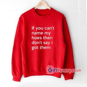 If You Can't Name My Hoes Then Don't Say I Got Them Sweatshirt - Funny Coolest Sweatshirt- Funny Gift