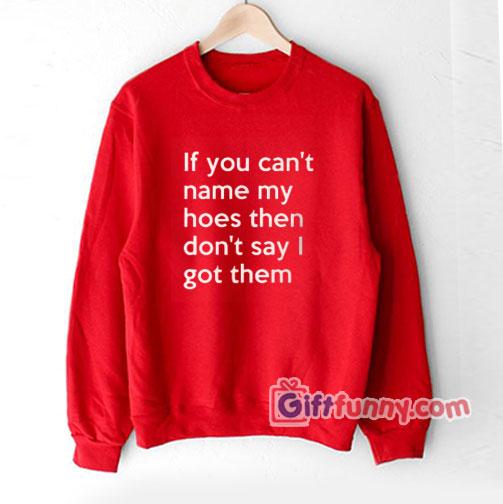 If You Can't Name My Hoes Then Don't Say I Got Them Sweatshirt – Funny Coolest Sweatshirt- Funny Gift